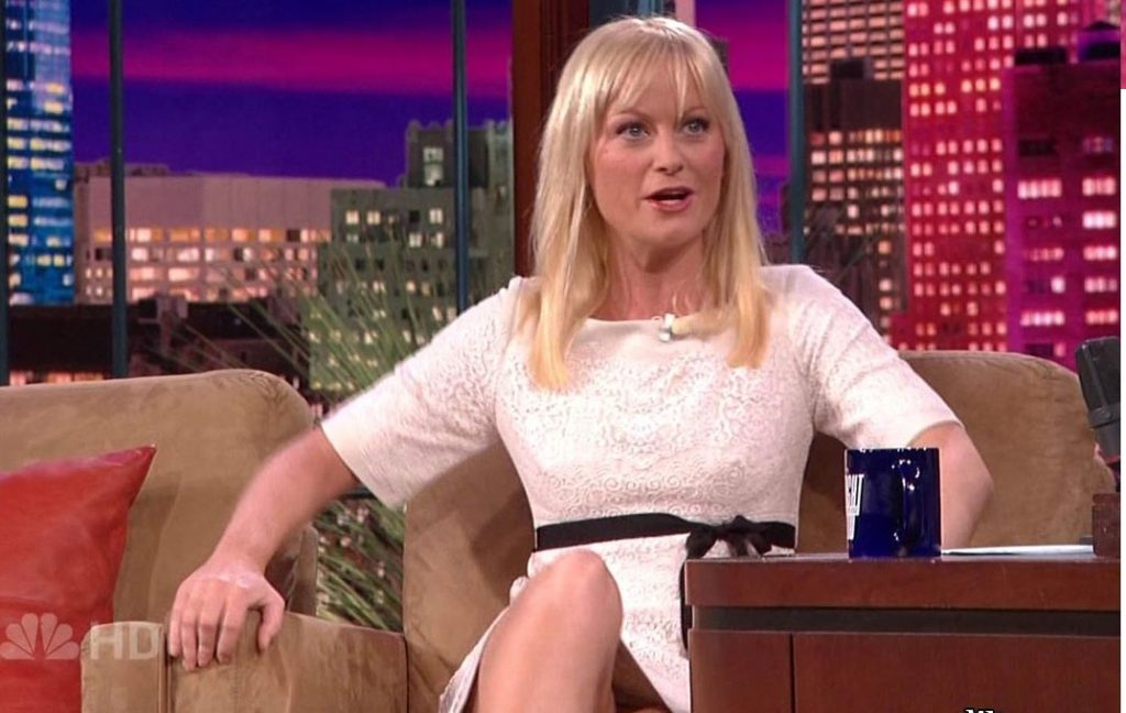 up skirt photo of Amy Poehler